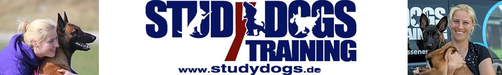 Studydogs